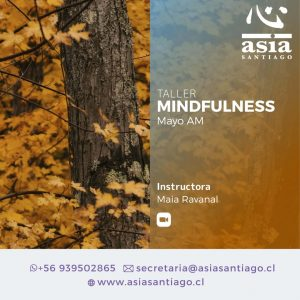 Taller Mindfulness Mayo 2021